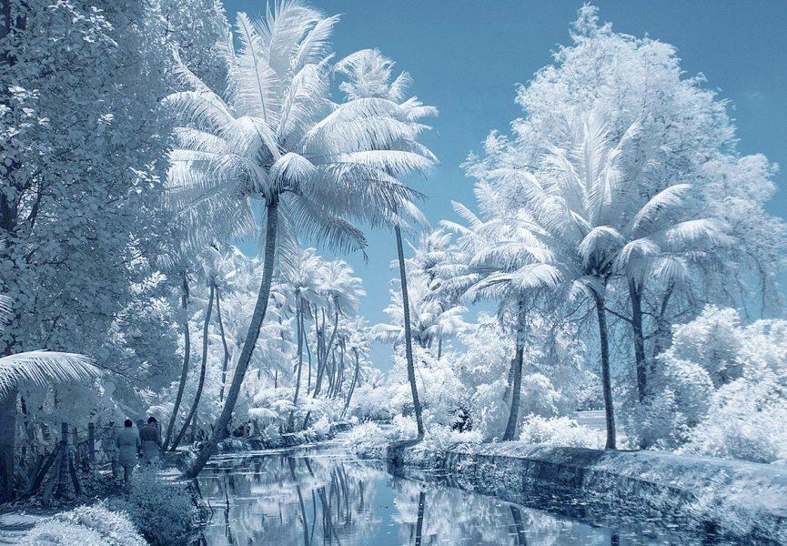 Kallare klimat kommer. Foto: V. Srinivasan. Licens: Unsplash.com