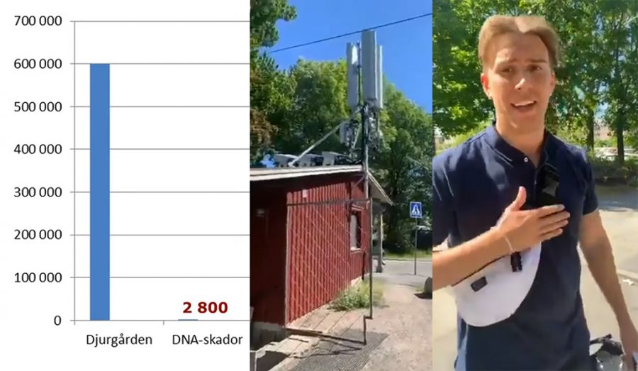 5g-strålning hög på Djurgården 3 juni 2020