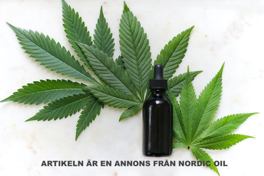Cannabisoljor. Foto: Kimzy Nanney