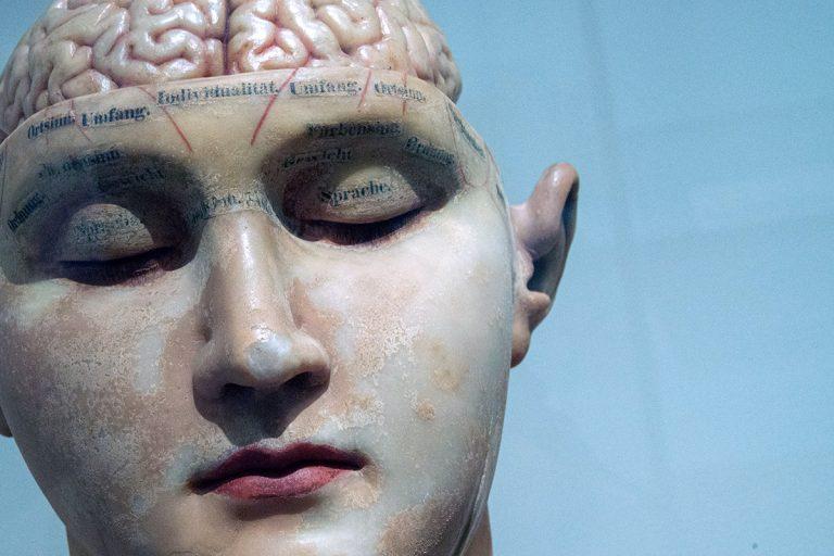 Rätt näring till hjärnan ger bättre koncentration och minne