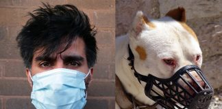 Man med andningsmask och hund med munkorg