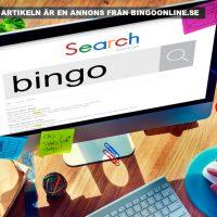 Spela bingo online. Licens: Rawpixel.com