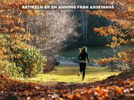 Träningsrutiner till hösten. Foto: Andy Choinski. Licens: Pixabay.com