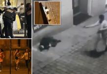 Terrorattack i Wien, 2 nov 2020. Bildmontage: Daily Mail