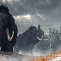 Bild: Istidskvinna. Illustration: Daniel Eskridge. Licens: Shutterstock.com