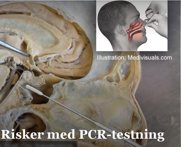 risker med pcr-testning.JPG